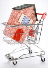 Casa en carro compra